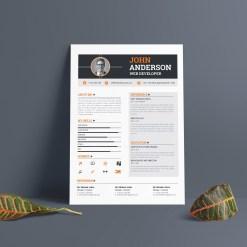 A4 Professional CV Template