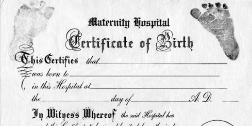 Studio shot of certificate of birth