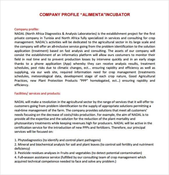 Superb Business Profile Template Sample Business Marketing Plan Template