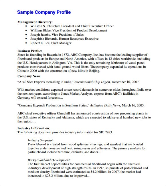 Sample Company Profile Format In Word Business Profile Template