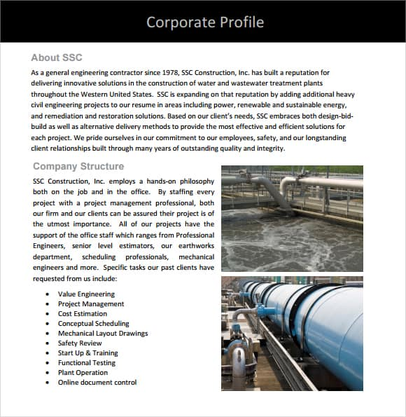 Company profile example 17.641