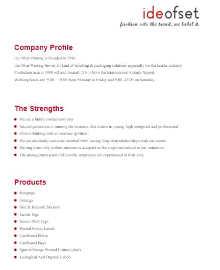 Company profile template 300