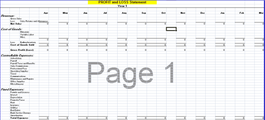 Profit and Loss Statement Template 1641