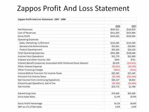 Profit and Loss Statement sample 2941