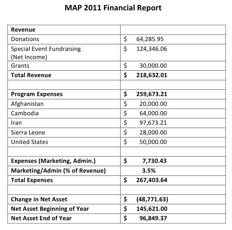 sample of financial report