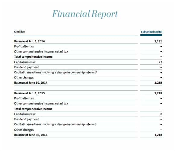 Financial Report Template 141  Monthly Financial Report Sample