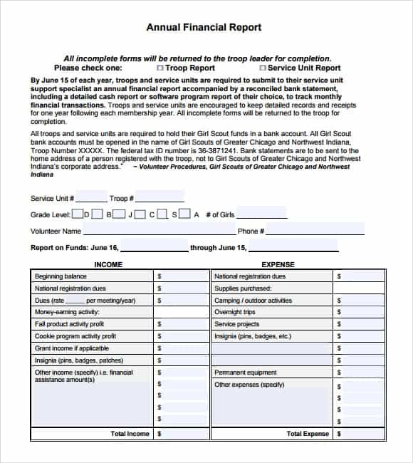 Financial Report Template 2461  Annual Financial Report Template