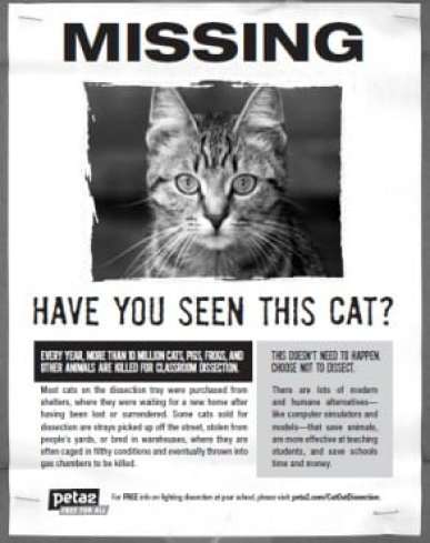 missing poster sample 4964