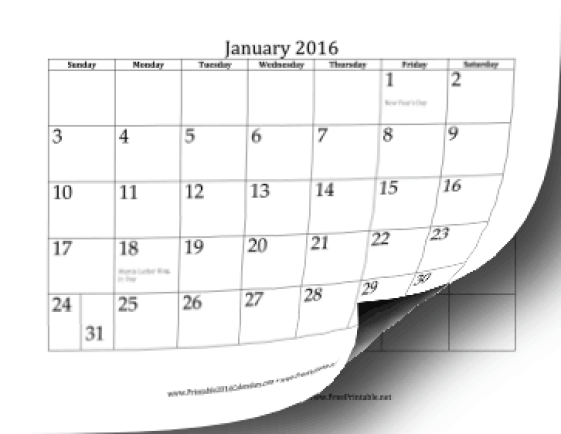 office calendar template 2941