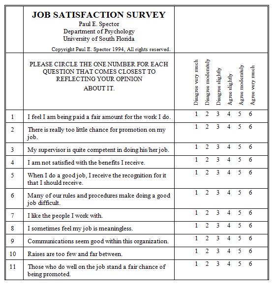 Satisfaction Survey Template 3641
