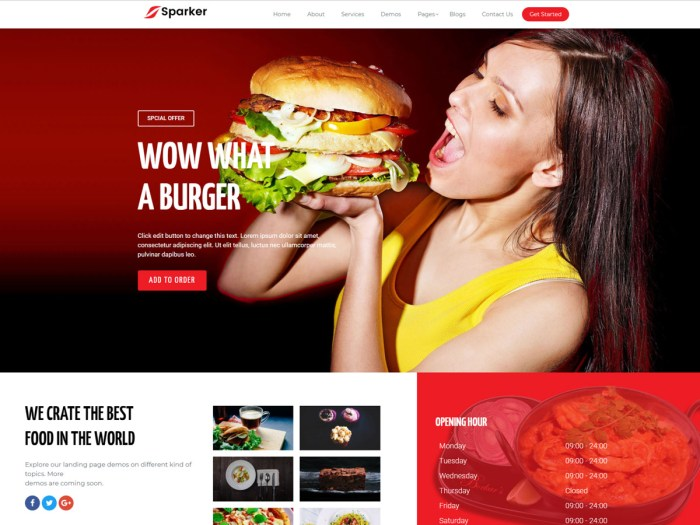 Elementor WordPress theme sparker pro
