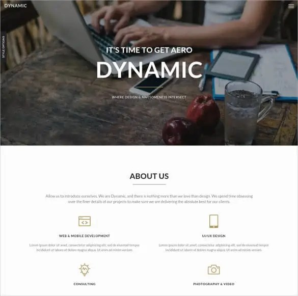 dynamic website template 333