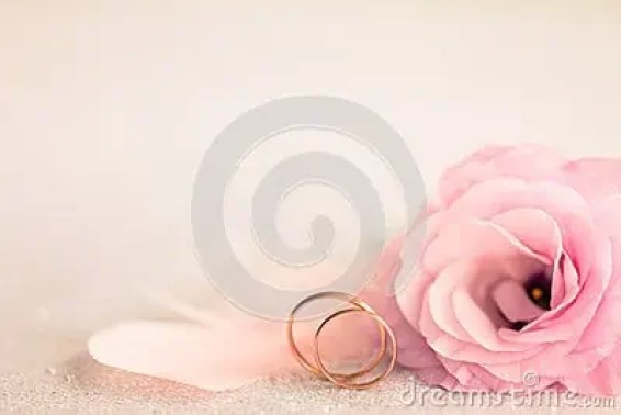 wedding background 164