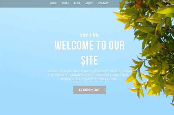 weebly themes 16
