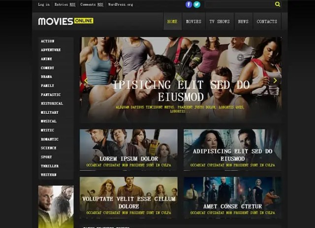 Cinema WordPress Themes 52