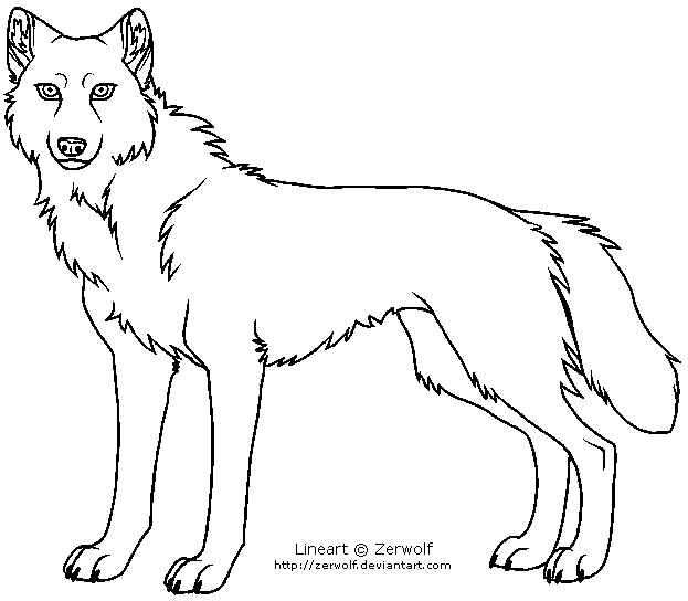 wolf template 32