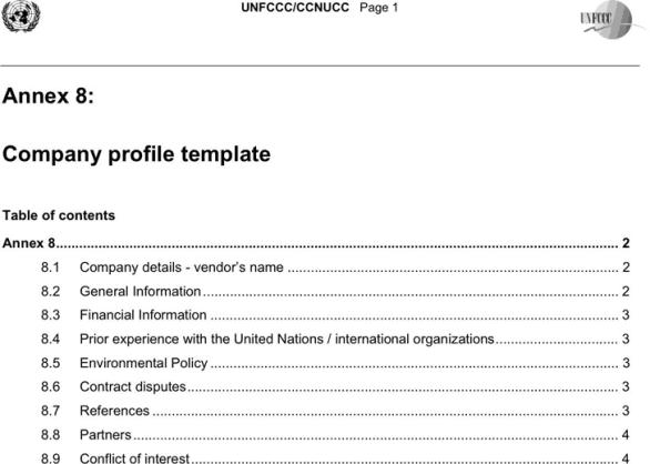 company profile template 30