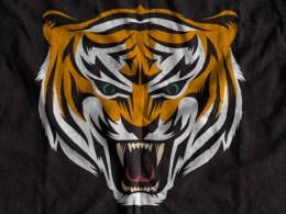 Tiger Logo Designs
