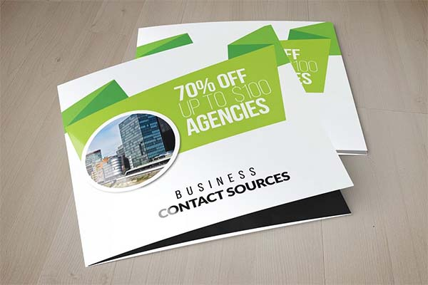 Business Solutions Consultant Trifold Brochure