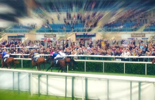 Horse racing event with Temple Legal Protection at Newbury Race course