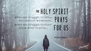 8.3 - Spirit Prays