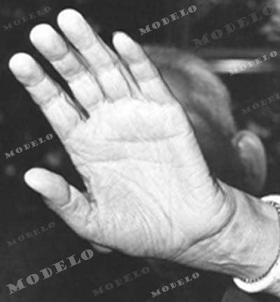 Quadro – Foto da mão de Meishu Sama
