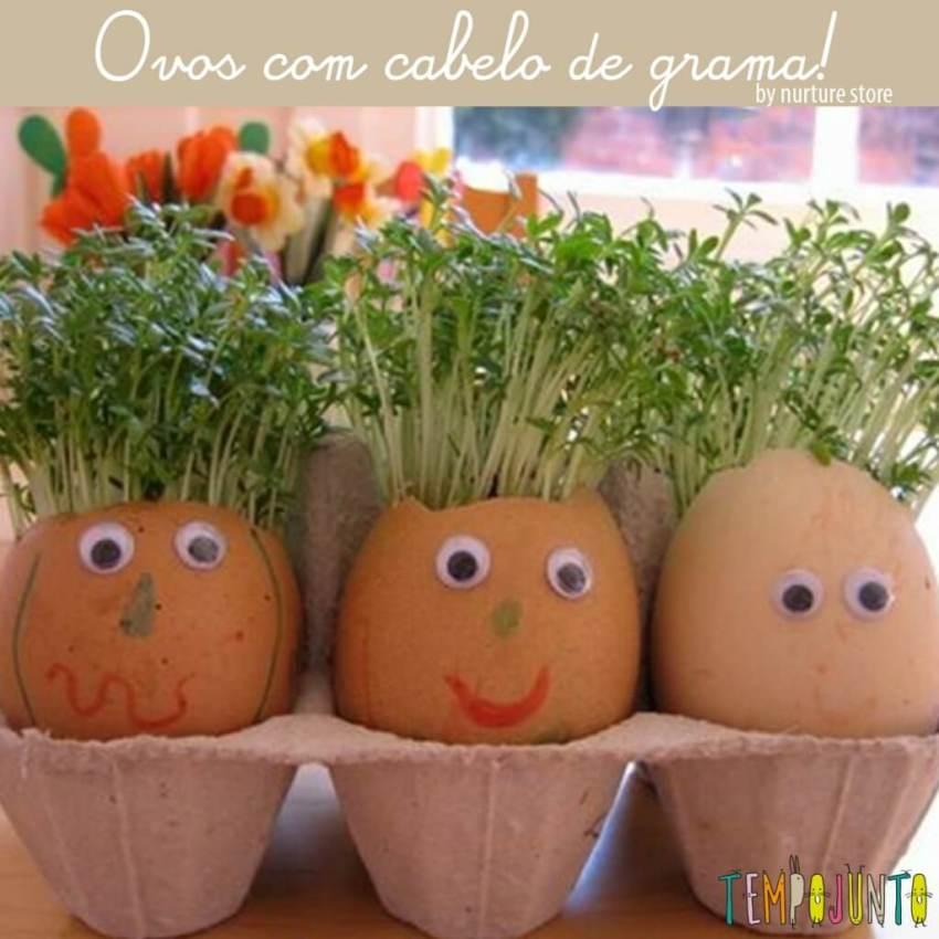 ovos com cabelo