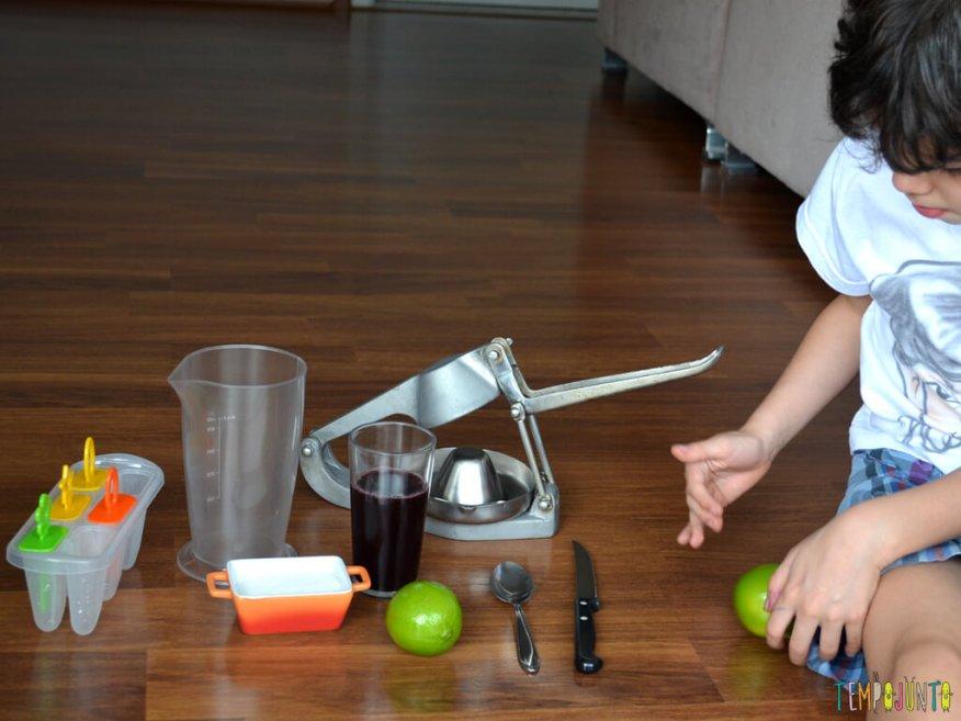 Tempojunto na Cozinha vamos fazer picole para toda a familia_materiais-para-o-picole