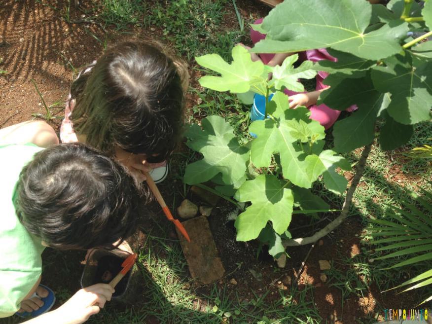 5-dicas-para-aprender-brincando-com-seus-filhos-e-os-amigos-deles_larissa_henrique_plantando