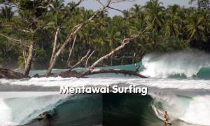 Mentawai Surfing Information