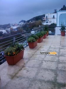 terrazza centro diurno (Medium)