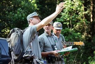 itri sequestro guardia forestale