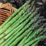 cuisson asperge verte, cuisson asperges vertes, temps de cuisson asperges vertes, temps de cuisson asperge