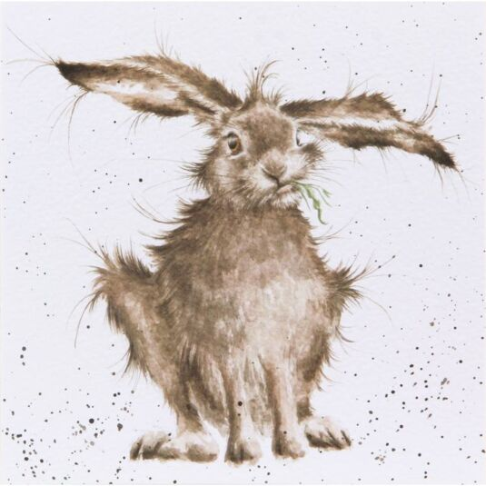 Wrendale Country Set Card Hare Brained Temptation Gifts