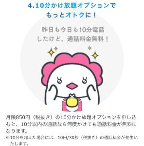MatePhoneオプション詳細