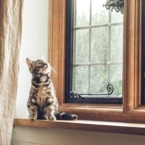 5 motivi per cambiare gli infissi di casa secondo Tende Da Sole Sanluri