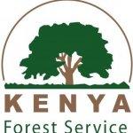 Kenya Forest Service july 2021