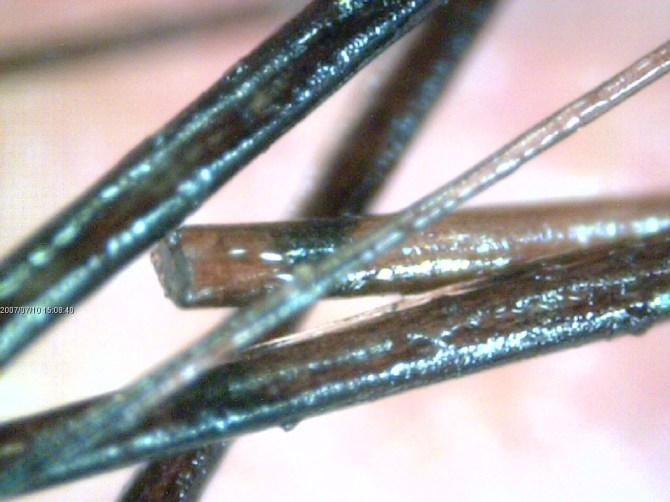 microscopio usb (4)