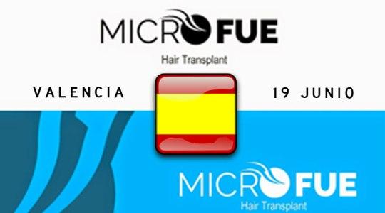 Microfue conferencia en Valencia