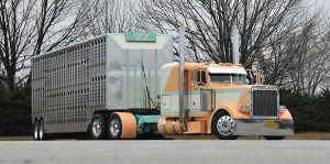 Tractor Trailer Loading Cattle Diagram  Wiring Diagram