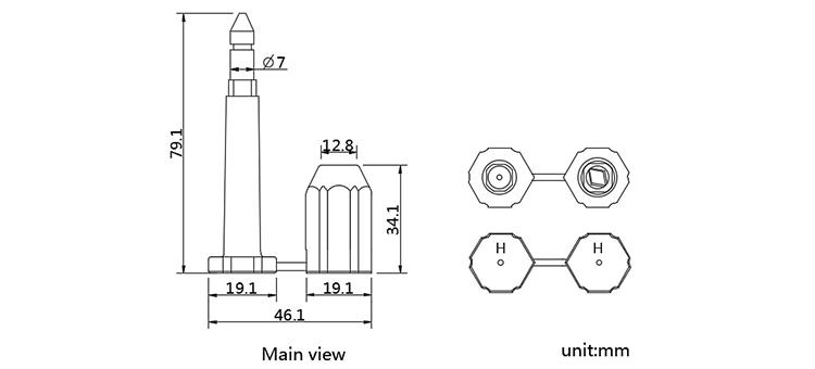 Standard or Nonstandard high secure disposable bolt seal