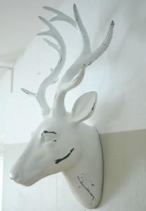 elnio galva ant sienos