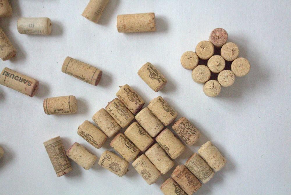 padekliukas-is-vyno-kamsciu1