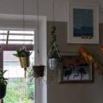 Pakabinami vazonai ir vazonų laikikliai kambarinėms gėlėms