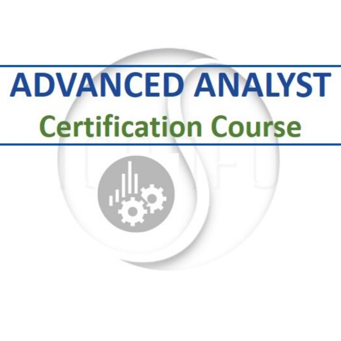 Advanced Analyst Tennis Coaching Course