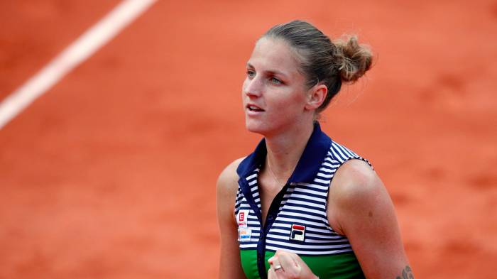 Image result for karolina pliskova