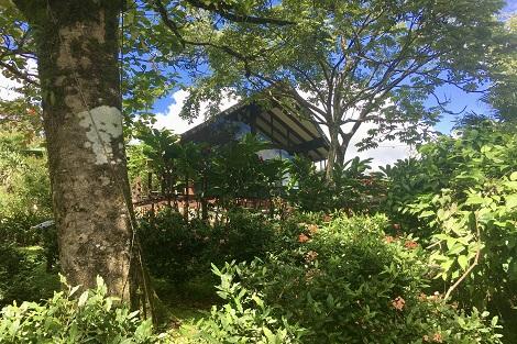 Tenorio Lodge Htel Costa Rica Lune de Miel Bungalow lit king restaurant bar jacuzzi