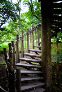 Treehouse Stairs Images - Reverse Search