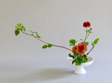 Kaneko Blumen Juni Juli August2018