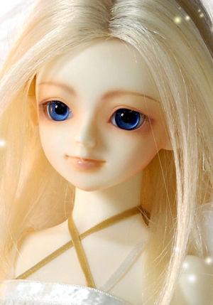 Shiratori-white01